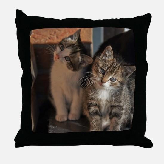CUTE KITTIES Throw Pillow