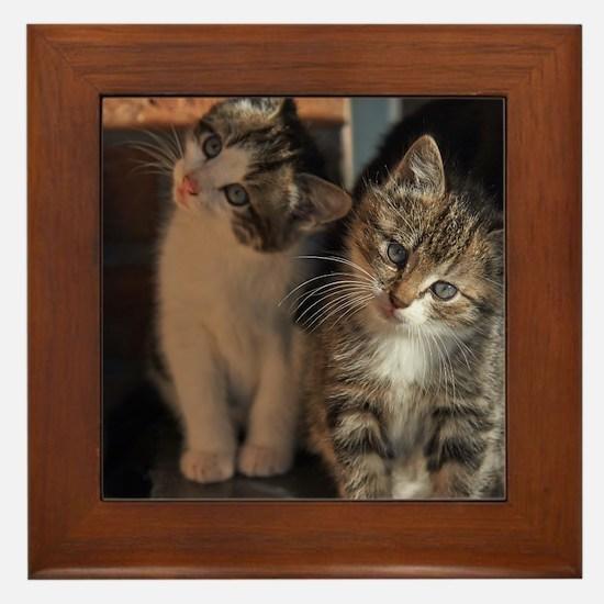 CUTE KITTIES Framed Tile