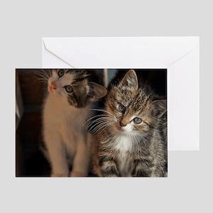 CUTE KITTIES Greeting Card