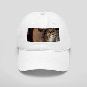 CUTE KITTIES Cap