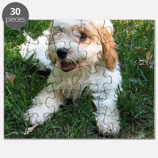 CUTE CAVAPOO PUPPY Puzzle