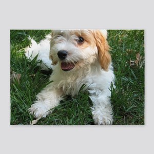 CUTE CAVAPOO PUPPY 5'x7'Area Rug
