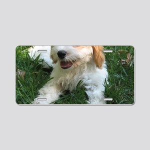 CUTE CAVAPOO PUPPY Aluminum License Plate