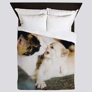 CALICO CAT AND WHITE KITTY Queen Duvet