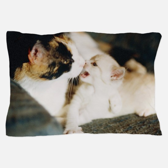 CALICO CAT AND WHITE KITTY Pillow Case