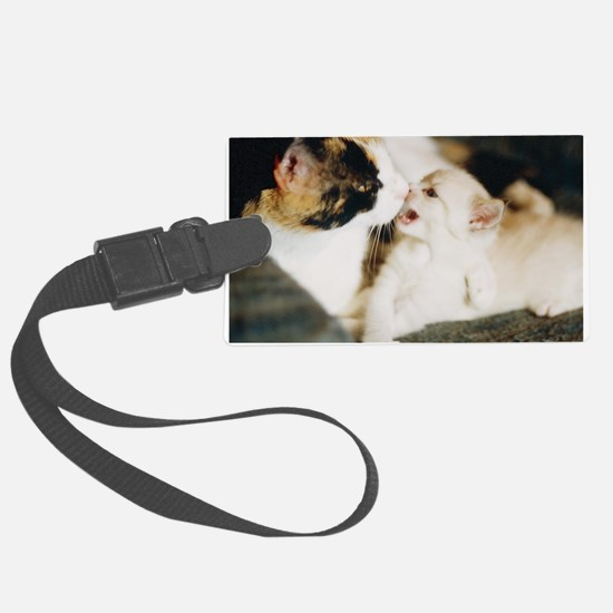 CALICO CAT AND WHITE KITTY Luggage Tag