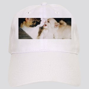 CALICO CAT AND WHITE KITTY Cap