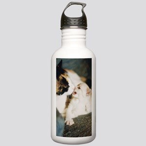 CALICO CAT AND WHITE K Stainless Water Bottle 1.0L