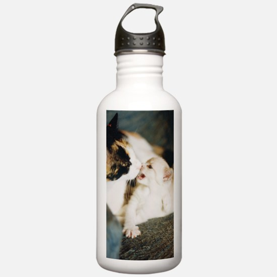 CALICO CAT AND WHITE K Water Bottle