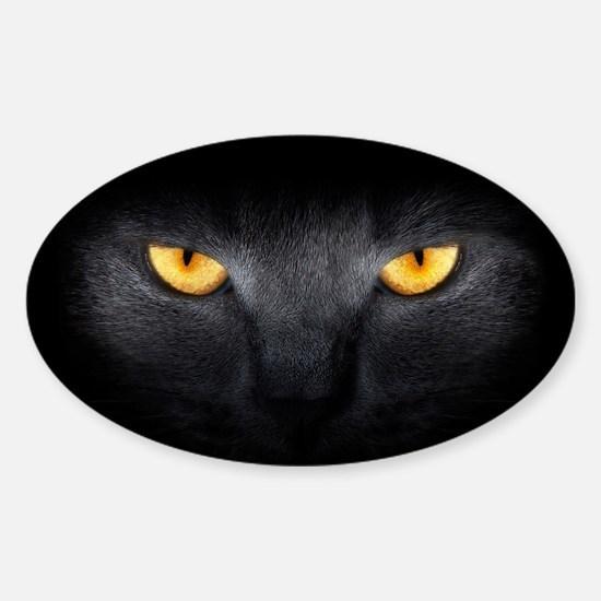 Cat Eyes Sticker (Oval)