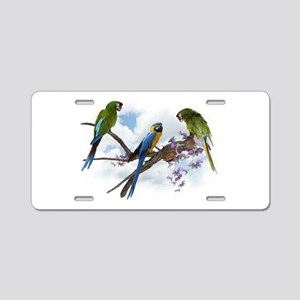 Macaw Parrots Aluminum License Plate