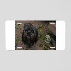 Kona the rescue dog Aluminum License Plate