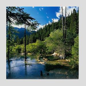 Mountain Forest Lake Tile Coaster