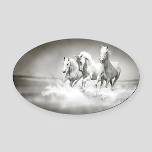 Wild White Horses Oval Car Magnet