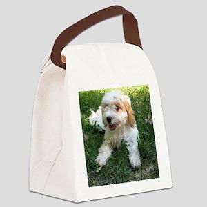 CUTE CAVAPOO PUPPY Canvas Lunch Bag