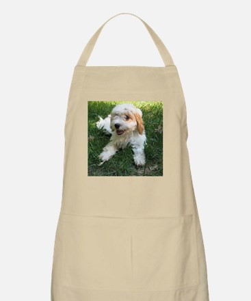 CUTE CAVAPOO PUPPY Apron