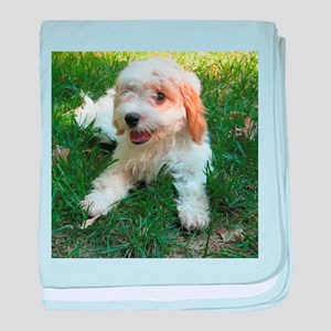 CUTE CAVAPOO PUPPY baby blanket