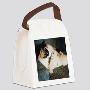 CALICO CAT AND WHITE KITTY Canvas Lunch Bag
