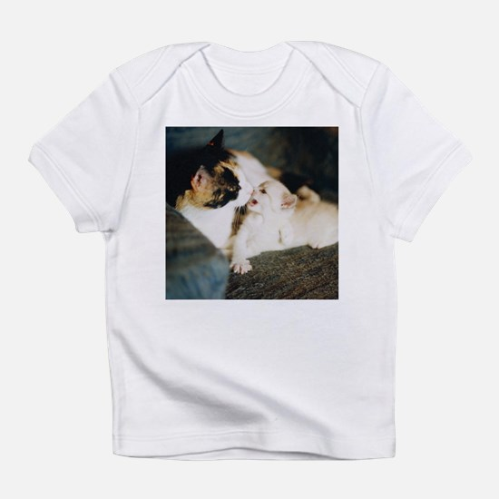 CALICO CAT AND WHITE KITTY Infant T-Shirt