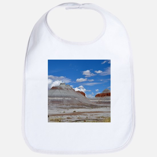 PETRIFIED FORREST TEPEES Bib
