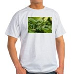 Boost (with name) Light T-Shirt