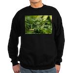 Boost (with name) Sweatshirt (dark)