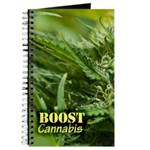Boost (with name) Journal