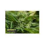 Boost (with name) Rectangle Magnet (100 pack)