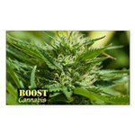 Boost (with name) Sticker (Rectangle 10 pk)