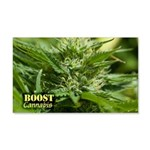 Boost (with name) 20x12 Wall Decal