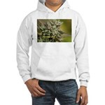Cherry Pie (with name) Hooded Sweatshirt