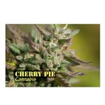 Cherry Pie (with name) Postcards (Package of 8)