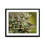 Cherry Pie (with name) Framed Panel Print
