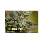 Cherry Pie (with name) Rectangle Magnet (100 pack)