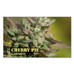 Cherry Pie (with name) Sticker (Rectangle 50 pk)