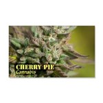 Cherry Pie (with name) 20x12 Wall Decal
