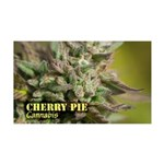 Cherry Pie (with name) 35x21 Wall Decal