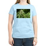 Cindy La Pew (with name) Women's Light T-Shirt