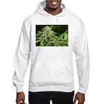 Cindy La Pew (with name) Hooded Sweatshirt