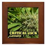 Critical Jack (with name) Framed Tile