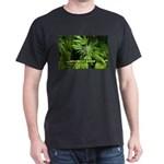 Grapefruit Kush (with name) Dark T-Shirt