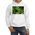 Grapefruit Kush (with name) Hooded Sweatshirt