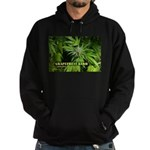 Grapefruit Kush (with name) Hoodie (dark)