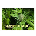 Grapefruit Kush (with nam Postcards (Package of 8)