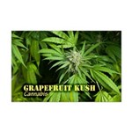 Grapefruit Kush (with name) Mini Poster Print