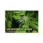 Grapefruit Kush (with name) Rectangle Magnet