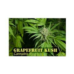 Grapefruit Kush (with n Rectangle Magnet (10 pack)