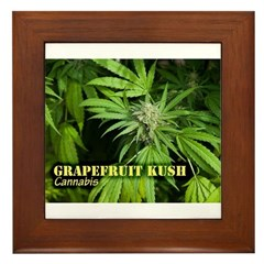 Grapefruit Kush (with name) Framed Tile