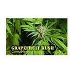 Grapefruit Kush (with name) 35x21 Wall Decal