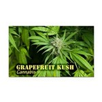 Grapefruit Kush (with name) Rectangle Car Magnet